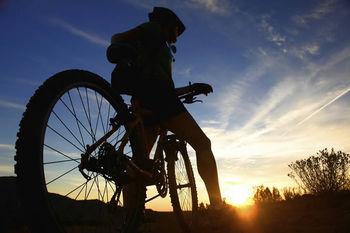 Mountainbiken in Willingen
